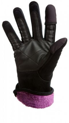 Freehands Women's Micro Fur Finger Cap Gloves